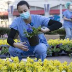 picture of medical professional in scrubs and mask planting flowers